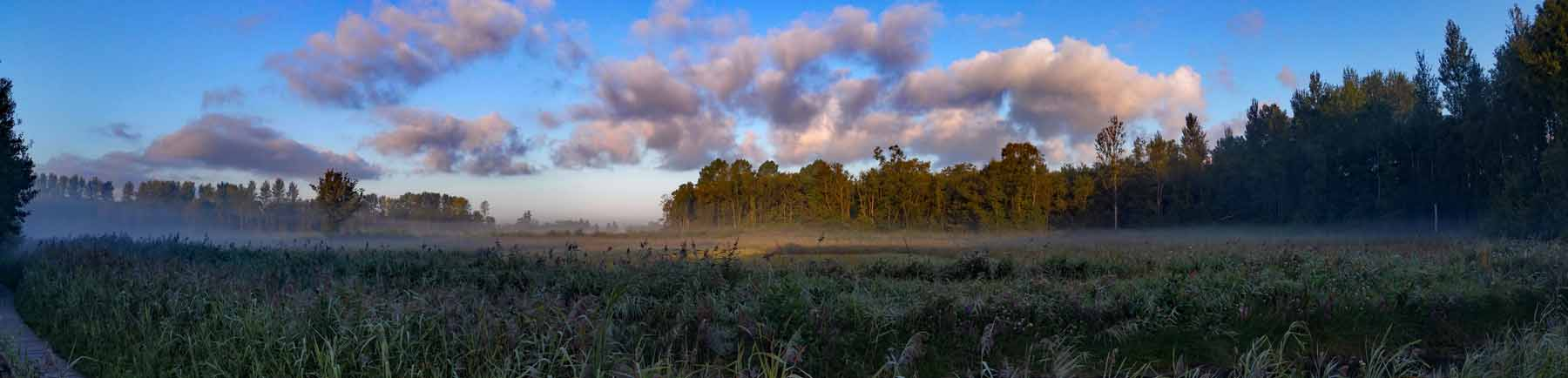 Sculthorpe moor oak fen by Andy Thompson