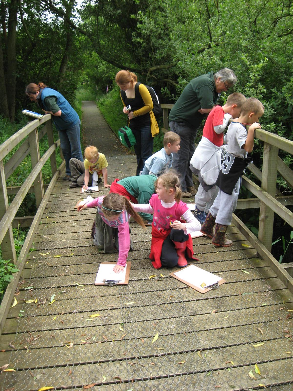 journey to forest school